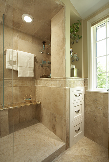 AGING IN PLACE Edina (55424) Bathroom/Remodel